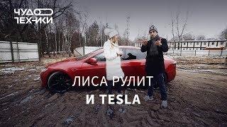 Стоит ли покупать Tesla? Лиса рулит