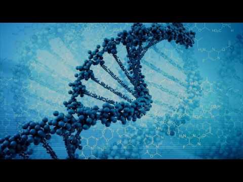 взаимосвязь между геном и признаком