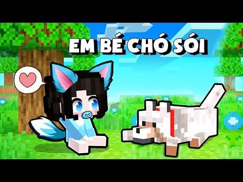 """Mèo Simmy Biến Thành """"Em Bé Chó Sói Đáng Yêu"""" Troll Siro Trong Minecraft"""