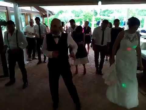 Animazione matrimonio Roberto guida salsa di gruppo Despacito