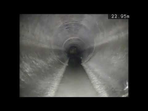 Metro Rod Swansea - Rat In Culvert