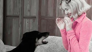 ☆ blackpink soft playlist ☆
