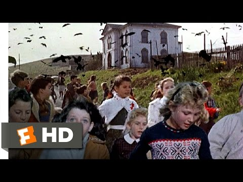 Crows-Attack-the-Students-The-Birds-611-Movie-CLIP-1963-HD