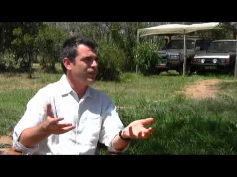 How Venture Capitalist Uses Finance Skills in Wildlife Conservation - Josep Oriol