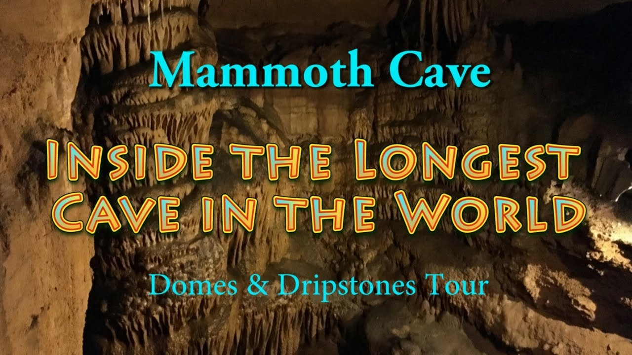mammoth cave latino personals Humans don't seem particularly tough compared to other animals, but looks can be deceiving a new study highlights one of humanity's strongest qualities: that the species is ecologically unique in its ability to occupy, and specialize in, a variety of different environments other animals are .