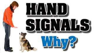 Dog training using hand signals-Why I need to use them?