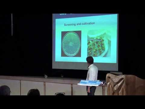 GMO & Mammal health, part 1.  Klaus Sall & Ib Borup Pedersen