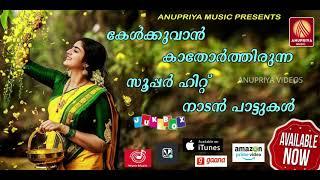 Nee Vannoru Neram Neelambal Poovidarum   Malayalam Musical Album Song