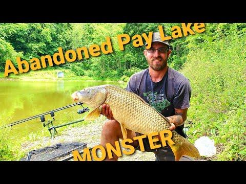 Abandoned Pay Lake Carp Fishing