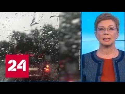 """""""Погода 24"""": на европейской части России началось похолодание - Россия 24"""