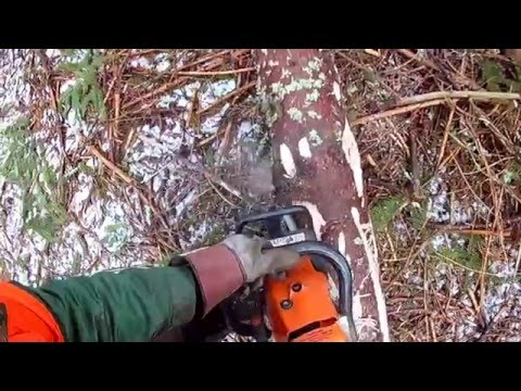 Forestry in Sweden, Chainsaw and winsch
