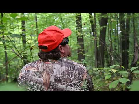 Squirrel Hunting Trick And Tips