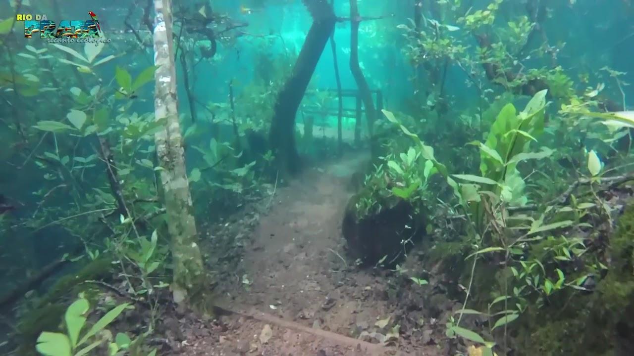 c8d74bdc85a Trilha Submersa no Recanto Ecológico Rio da Prata