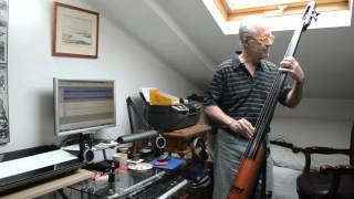 ns design nxt 4 string double bass blues in d tin pan alley