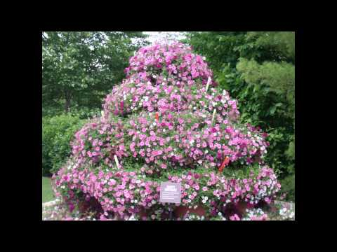 10 Minute Tourist: Meijer Gardens and Sculpture Park