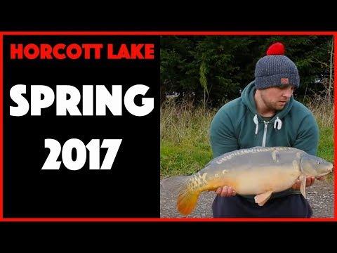 CARP FISHING - Horcott Lake