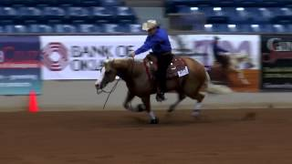 Wimpys Little Freckl ridden by Peter DeFreitas - 2014 Tulsa Reining Classic (Open Derby)