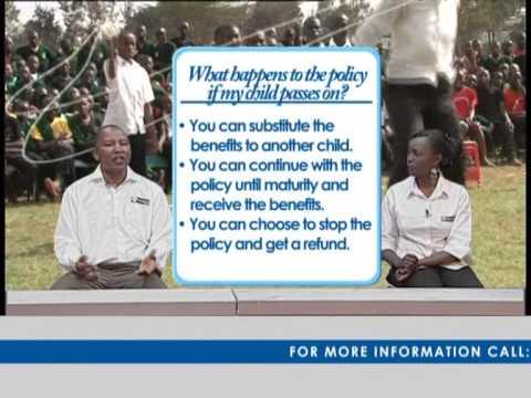 Pan Africa Life Assurance Overview