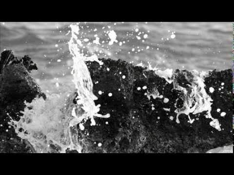 Baroque Bordello - Les Algues