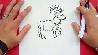 Como dibujar un ciervo paso a paso | How to draw a deer
