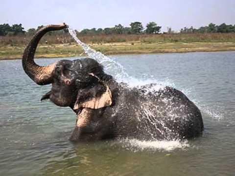 Mekong River Drinking Water
