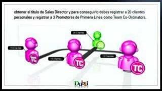 DubLi Network Plan De Compensacion - Espanol