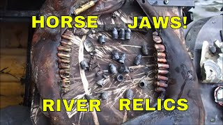 River Relics: Bullets And A Horse! (lower jaw)