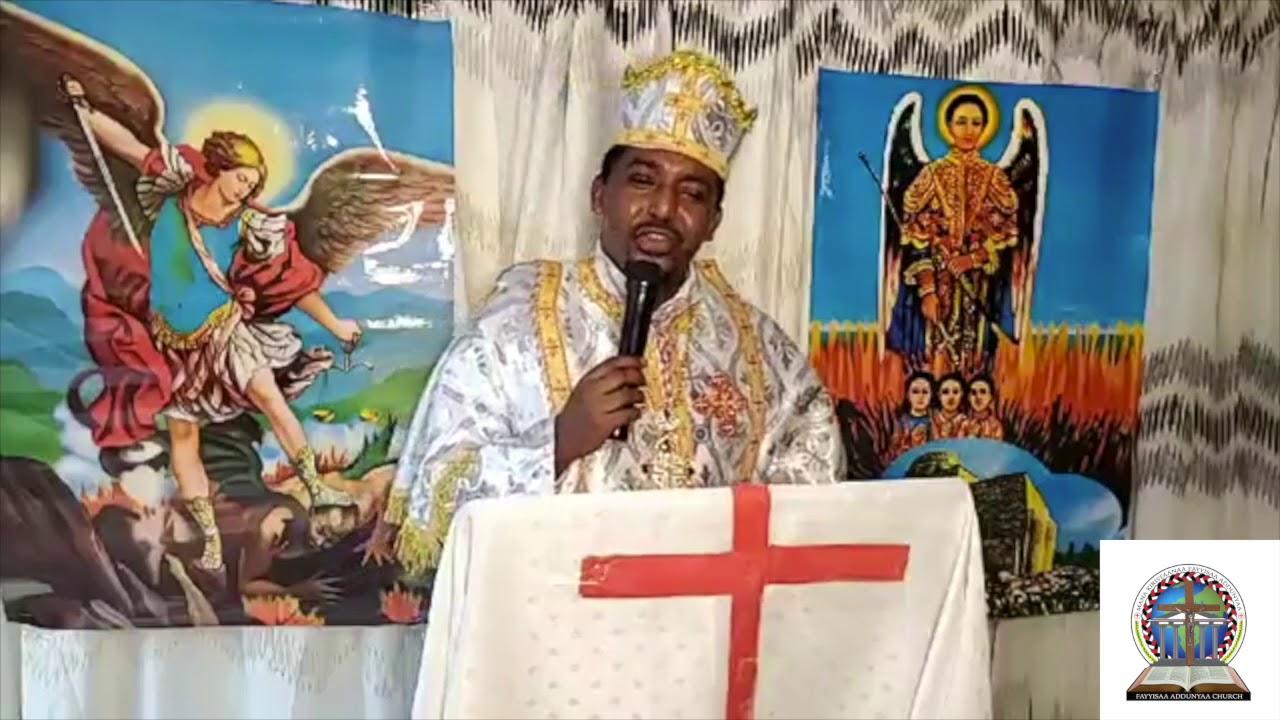 """Part 2 - """"Waan Nyaatamu Qabduu?"""" Barumsa Wangeelaa Ortodoksii Luba Saamu'eel Biraanuutiin"""