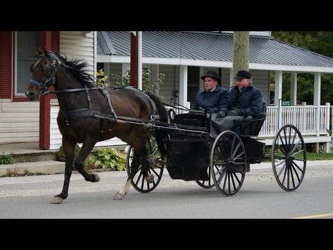 History Documentary Films ✧ The Mennonites - Living in a Perfect World