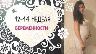 12-14 НЕДЕЛЯ БЕРЕМЕННОСТИ #P-ONLINE