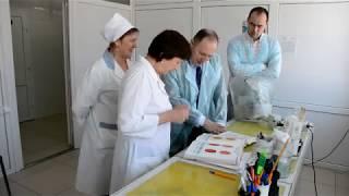 Дуальное обучение. Самарская ветеринарная лаборатория.