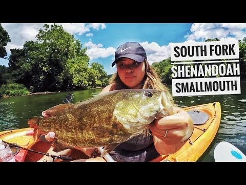 Shenandoah River Smallmouth! The COOLEST Riverfront Property