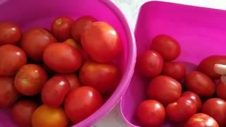 Просто и быстро  Вкусные помидоры в собственном соку на зиму