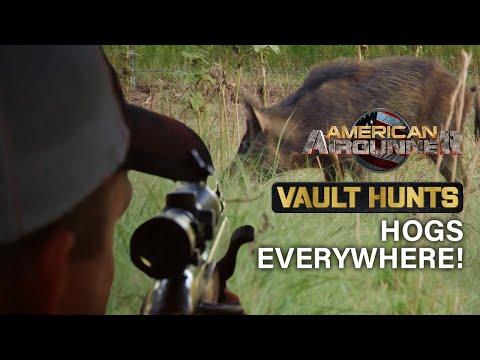 Oklahoma AIRGUN HOG HUNTING with Steve Criner