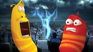 LARVA - A STORMY NIGHT | Cartoon Movie | Cartoons For Children | Larva Cartoon | LARVA Official