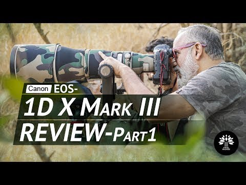 Canon 1DX Mark III. Feature Packed Beast Of A Camera! A Review.