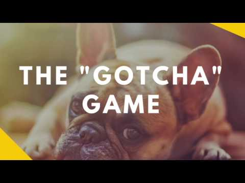 The Gotcha Game - Teaching Your Dog To Love Being Caught