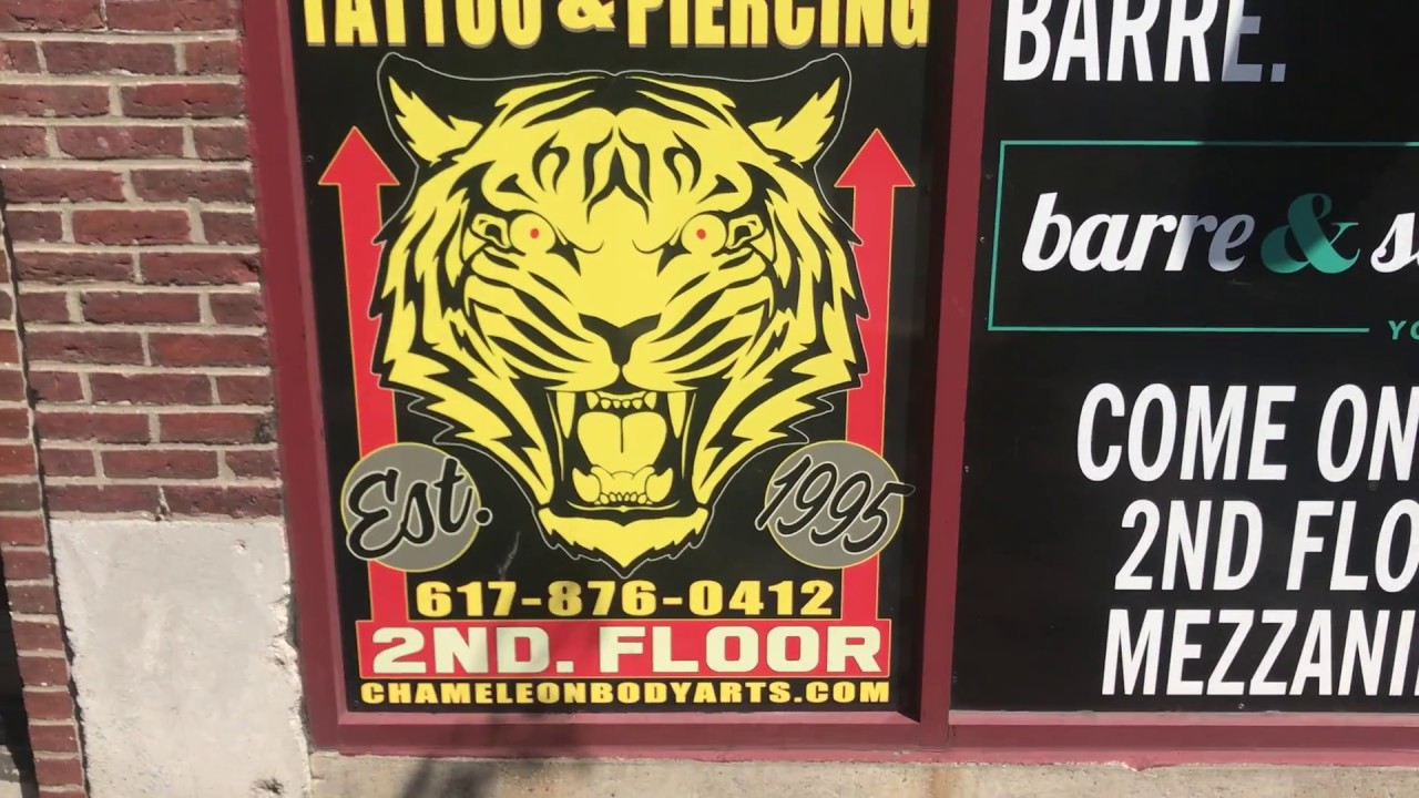 App Application Video For Chameleon Tattoo And Body Piercing Youtube