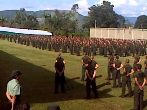Gimnasia básica militar sin armas youtube.