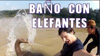 Campamento de elefantes - Laos #4