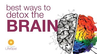 Best Ways to Detox the Brain | John Douillard