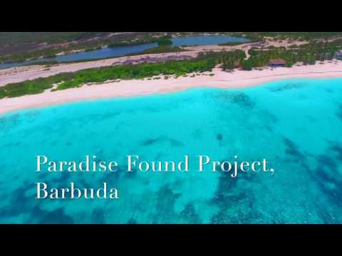 Robert De Niro Paradise Found Project