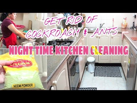 My Kitchen Cleaning Night Routine | Get Rid of Cockroach & Ants | Indian (NRI) Mom