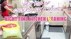 My Kitchen Cleaning Night Routine   Get Rid of Cockroach & Ants   Indian (NRI) Mom