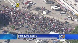 35,000 Pro-Lifers March In Downtown LA