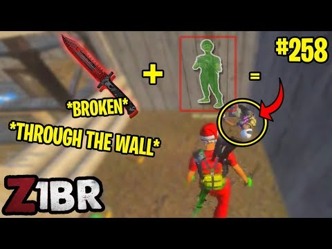 KNIFE KILL THROUGH THE WALL! ACTUALLY BROKEN! Z1BR - BEST ODDSHOTS & FUNNY MOMENTS #258
