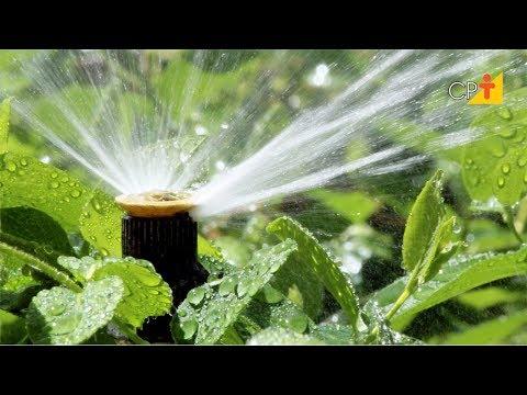 Clique e veja o vídeo Turno de Rega - Curso Projeto de Irrigação por Aspersão