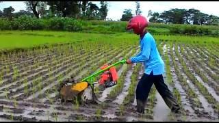 Garden Tools Obam Brush Tiller Penyiang Gulma Dan Penggembur