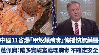 中國11省爆「甲殼類病毒」傳播快無藥醫|蓬佩奧:陸多實驗室處理病毒 不確定安全|早安新唐人【2020年4月30日】|新唐人亞太電視