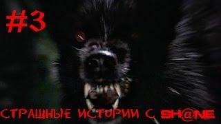 Страшные истории с Sh@ne #3 - Кто то ходит за дверью